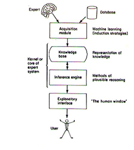 phd thesis expert system
